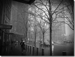 Snowy New York Morning 1/11